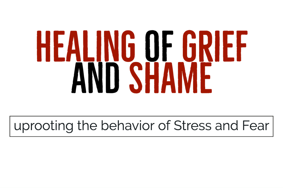 The Healing of Grief and Shame