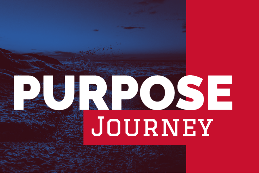 Purpose Journey (Training)